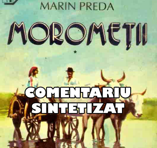 Morometii - Comentariu Sintetizar