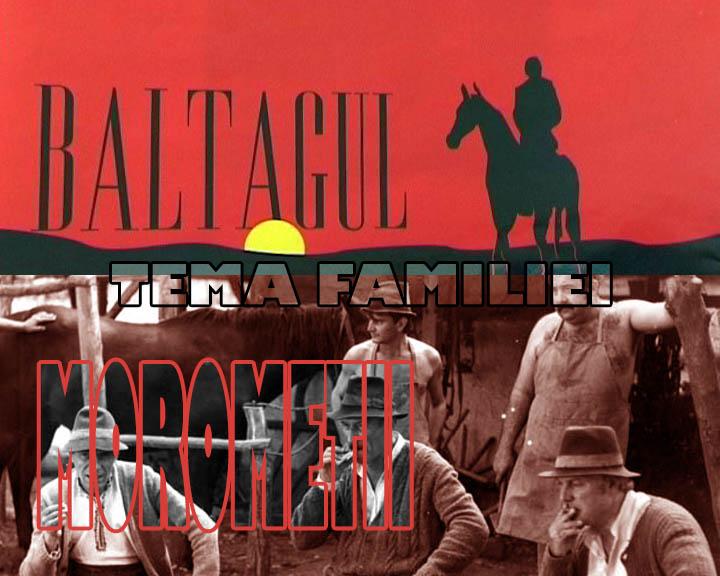 Tema familiei in doua opere studiate
