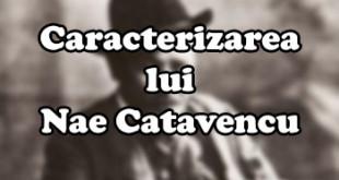 Caracterizarea lui Nae Catavencu