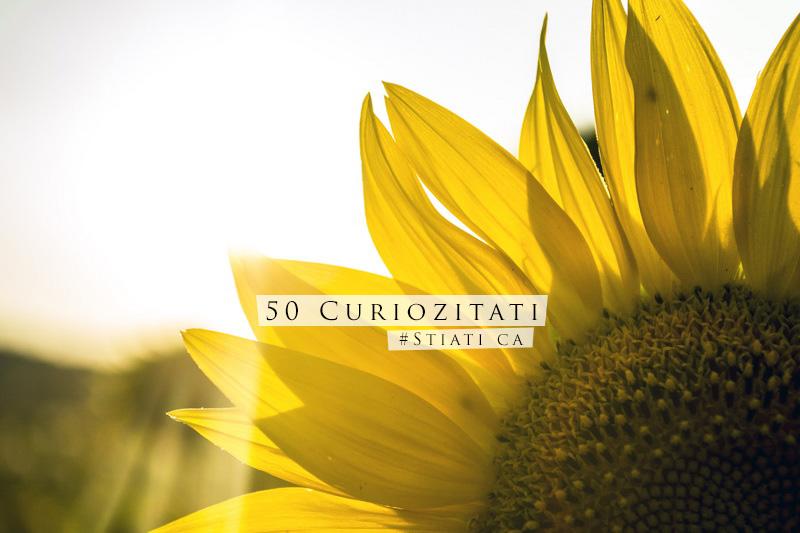 50 de curiozitati: Stiati ca…?